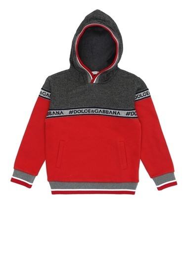 Dolce&Gabbana Sweatshirt Gri